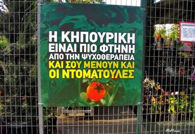 Αστικοί και περιαστικοί λαχανόκηποι στην πόλη